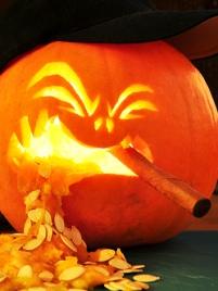 Cigar Pumpkin