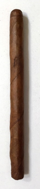 Ouroboros Lancero