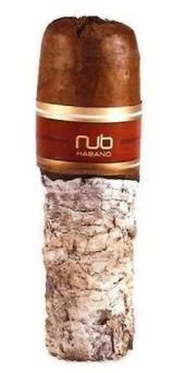 Nub Cigars