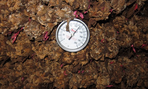 tobacco-overheated